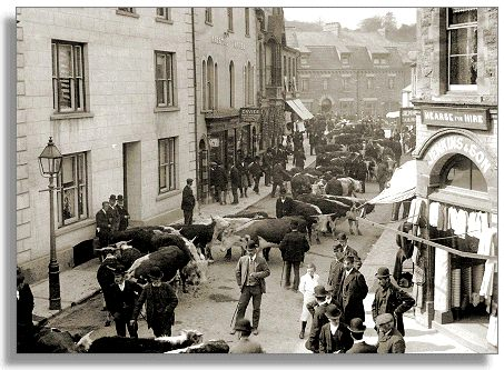 Cattle fair c1905