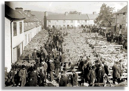 Sheep market, Builth